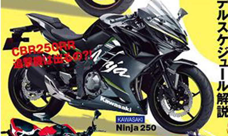 All New Kawasaki Ninja 250 FI ala Youngmachine
