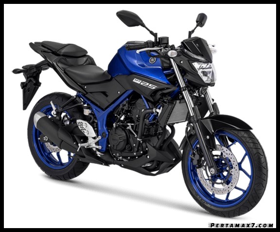 Warna Yamaha MT-25 Versi 2019 Terbaru Blue Metallic